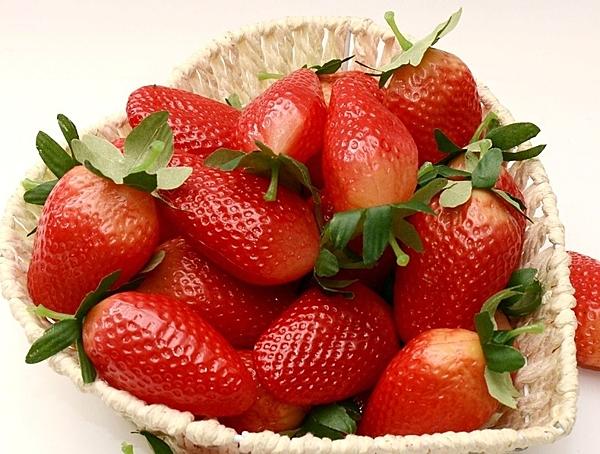 [協貿國際]仿真水果蔬菜蔬果模型 整套價(10個1套)