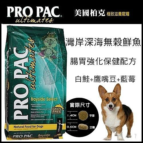 *KING WANG*【美國柏克 PRO PAC】無穀全齡犬配方(白鮭+鷹嘴豆+藍莓) 1lb
