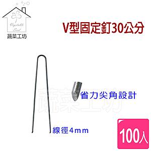 V型固定釘30公分100支/組(線徑4mm.V型釘.鐵線釘)