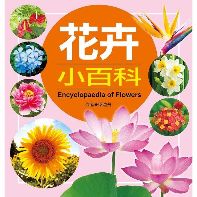 兒童百科:花卉小百科(典藏版)