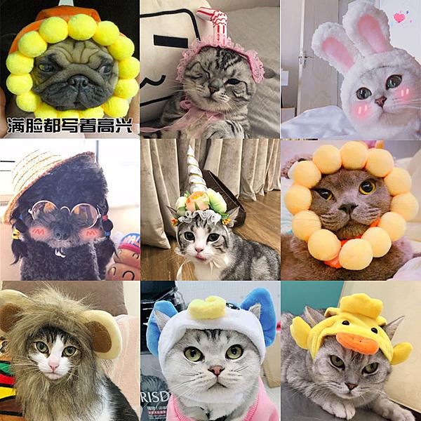 寵物帽子可愛動物造型變身裝帽