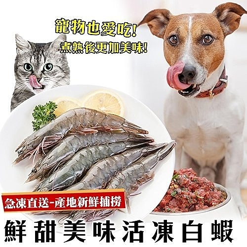 *KING WANG**鮮食喵*宏都拉斯活凍大白蝦 800±10%/盒