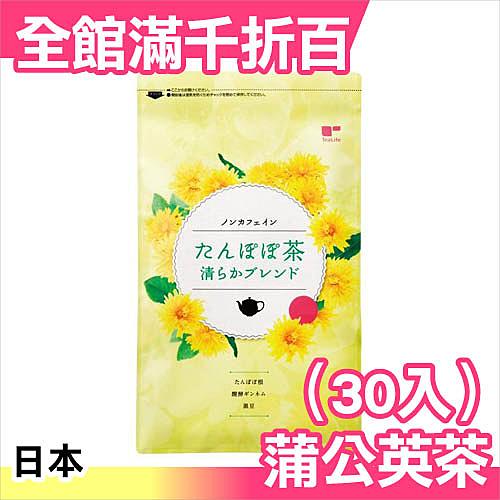 日本製 蒲公英茶 茶包 2gx30入 靜岡縣 無咖啡因 孕婦可用 茶包 飲品 【小福部屋】