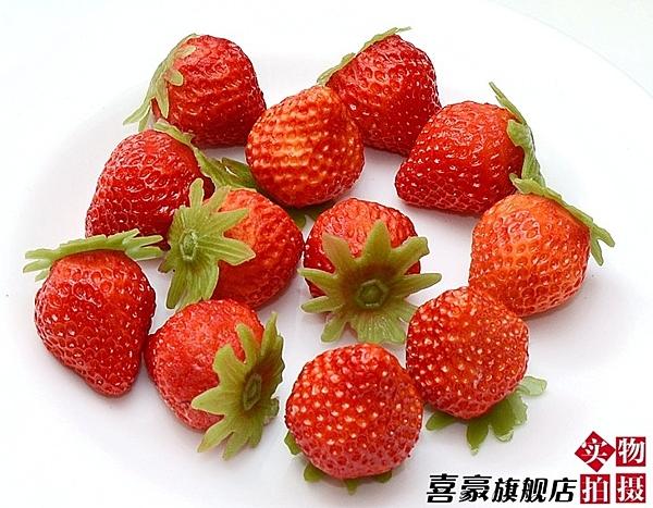 [協貿國際]仿真水果蔬菜蔬果模型整套價(12顆1套)