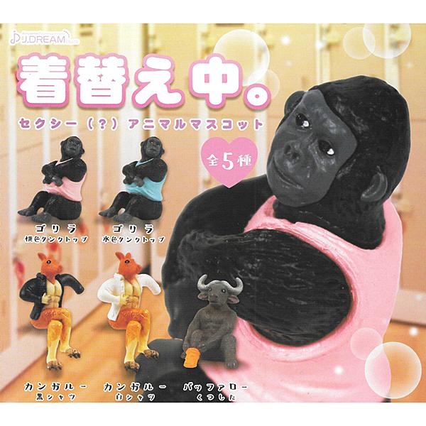 全套5款【日本正版】更衣中動物公仔 扭蛋 轉蛋 動物模型 J.DREAM - 854367