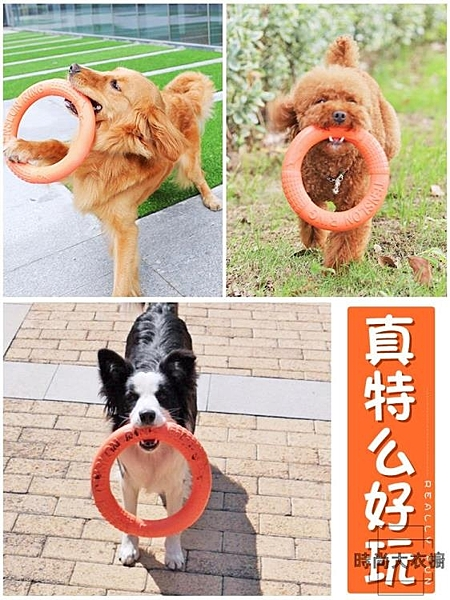 狗狗幼犬玩具磨牙棒耐咬大型犬寵物【時尚大衣櫥】