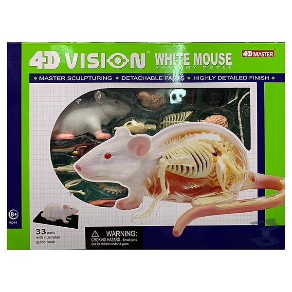 【4D Master】26002 立體拼組模型 半透視 白老鼠