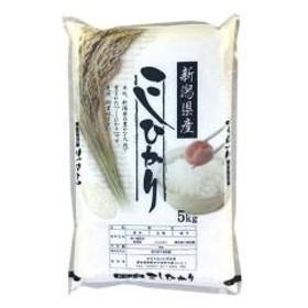 精白米 5kg 新米 新潟県 コシヒカリ 5kg こだわり満足 こしひかり 1等米 100%