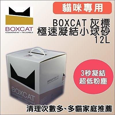 *KING WANG*國際貓家BOXCAT《灰標-極速凝結小球砂》12L(10kg)