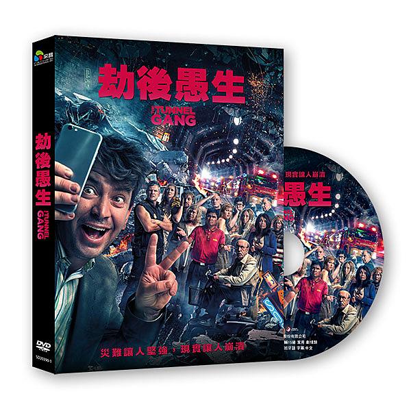 【停看聽音響唱片】【DVD】劫後愚生