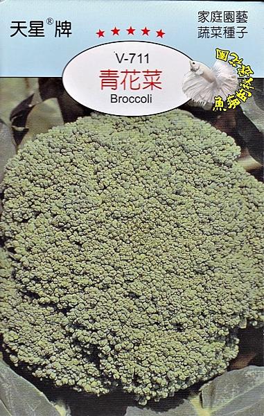 [青花菜種子] 各式觀賞花卉種子 香草種子 蔬菜水果種子 . 單買種子。郵局運費40元起
