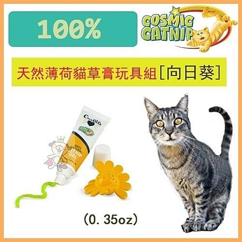 *King Wang*美國宇宙貓100%天然薄荷貓草膏玩具組[向日葵]CM-12735