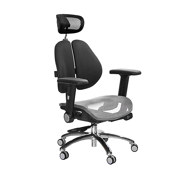 GXG 高雙背網座 工學椅 (鋁腳/摺疊升降扶手) TW-2806 LUA1