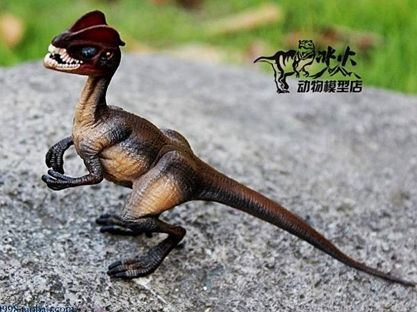 【協貿國際】野生動物恐龍模型玩具雙脊龍