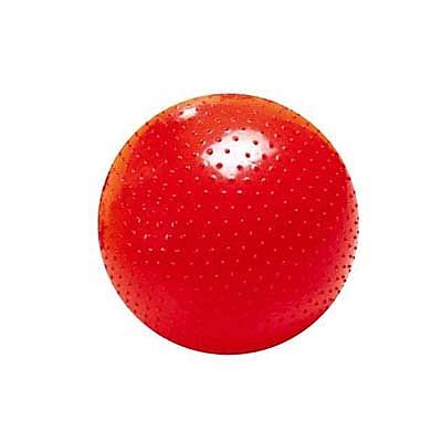 【華森葳兒童教玩具】感覺統合-大觸覺球/環保 B7-NON-P-0002