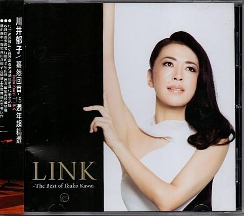 【停看聽音響唱片】【CD】川井郁子:慕然回首 - 15週年超精選
