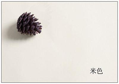 素雅純色背景紙攝影紙(圖一)(20個組)