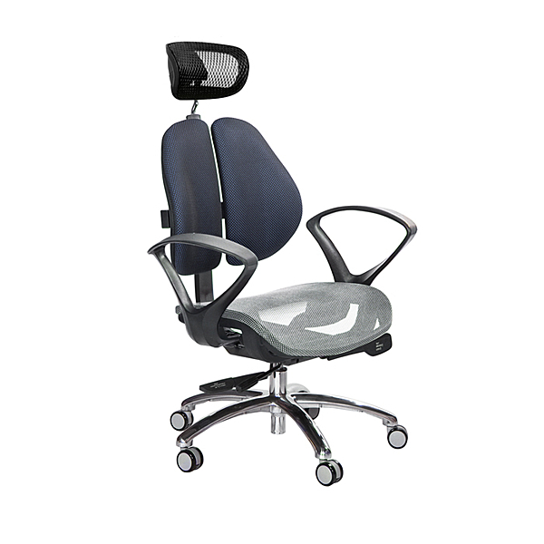 GXG 高雙背網座 工學椅 (鋁腳/D字扶手) TW-2806 LUA4