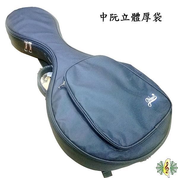 中阮袋 [網音樂城] 中阮 立體 厚袋 琴盒 琴袋 琴包 提袋 背袋
