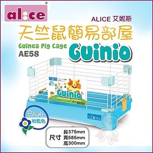 *KING WANG*【含運】ALICE艾妮斯《天竺鼠簡易部屋-粉藍色AE58 》鼠籠 天竺鼠適用