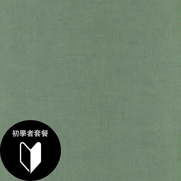 綠色 素色 rasch(德國壁紙) 2020 / 489736+施工道具套餐