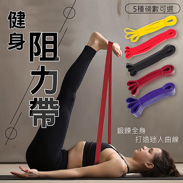 【健身阻力帶】國際級阻力帶 高級彈力帶 TRX 彈力繩拉力繩阻力帶拉力帶重訓瑜珈健身