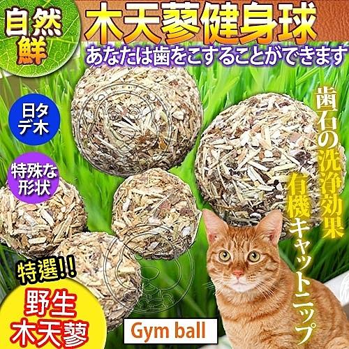 【培菓平價寵物網】自然鮮系列》木天蓼健身球貓玩具NF-012