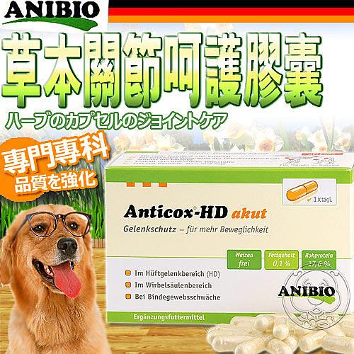 【培菓寵物48H出貨】ANIBIO》德國家醫寵物保健系統 (專門專科) 草本關節呵護膠囊50顆
