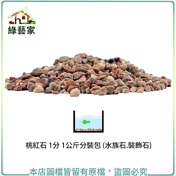 【綠藝家】桃紅石 1分 1公斤分裝包 (水族石.裝飾石)