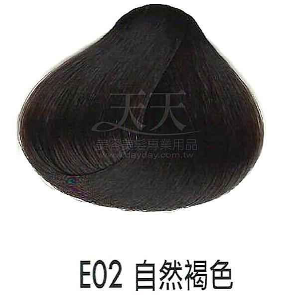 【專業推薦】耐婷 亮彩染髮劑 E-02 自然褐色 60g [33447]