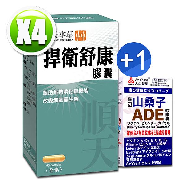 順天本草 捍衛舒康膠囊(60顆/盒)x4 送【人生製藥 渡邊山桑子ADE軟膠囊(50錠)x1(送完為止)】
