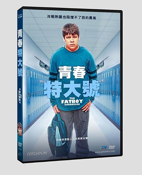 【停看聽音響唱片】【DVD】青春特大號