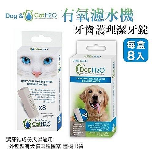 *KING WANG*【特價】Dog & Cat H2O有氧濾水機專用《牙齒護理潔牙錠8入》澳洲免刷牙口氣清新
