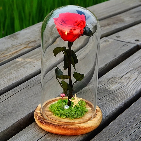 永生花.不凋花.訂製玻璃罩成品