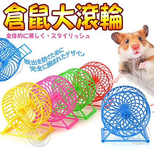【培菓平價寵物網】dyy》酷炫跑輪|風火輪直徑13cm(倉鼠/老鼠用)顏色隨機出貨