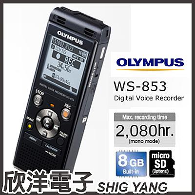 日本 Olympus WS-853 數位錄音筆 (8GB可擴充) / 黑色款 德明公司貨保固18個月