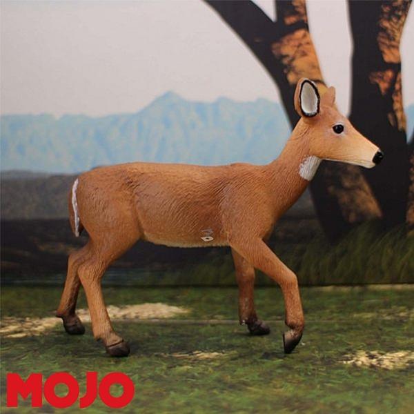 【Mojo Fun 動物星球】森林動物-白尾雌鹿 387185