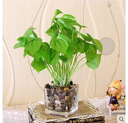 新款玻璃花瓶+綠色仿真植物