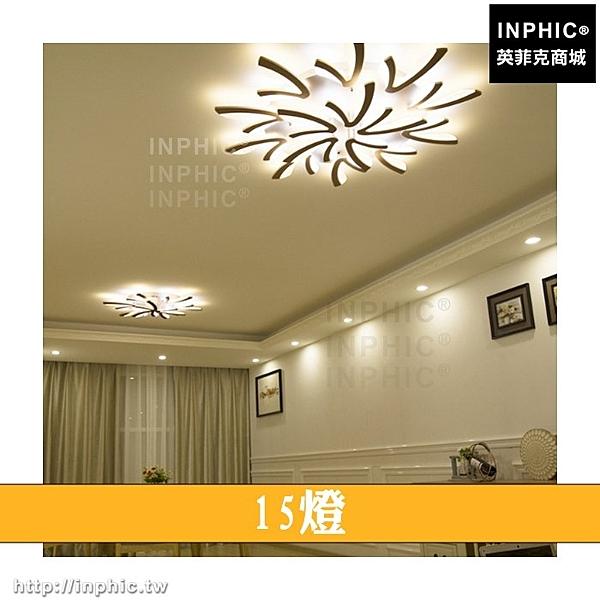 INPHIC-幾何北歐客廳燈具LED吸頂燈簡約餐廳現代臥室燈LED燈書房-15燈_heas