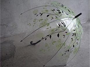 印花透明傘 阿波羅