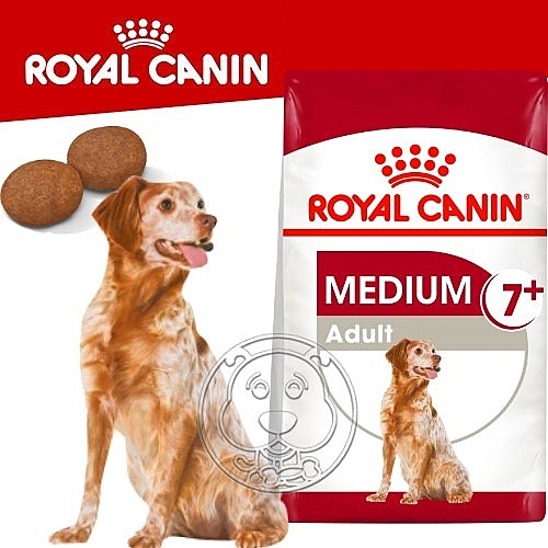 四個工作天出貨除了缺貨》SHN 法國新皇家飼料《中型熟齡犬7+歲齡M+7》10KG