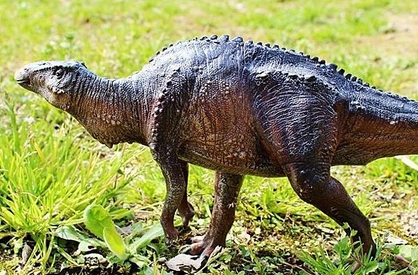 【協貿國際】恐龍大王玩具模型滿洲龍