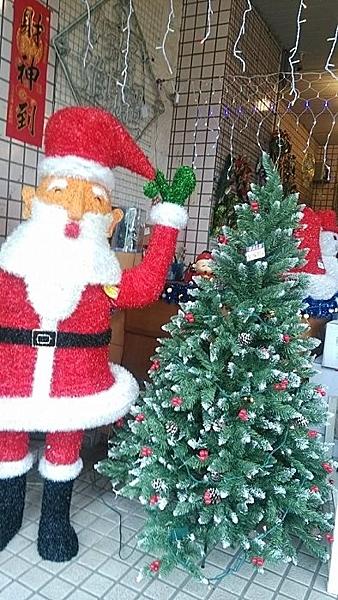 4呎PVC尖頭紅果樹(裸樹)120CM高 聖誕節 聖誕襪聖誕帽聖誕燈聖誕金球聖誕服聖誕蝴蝶結花