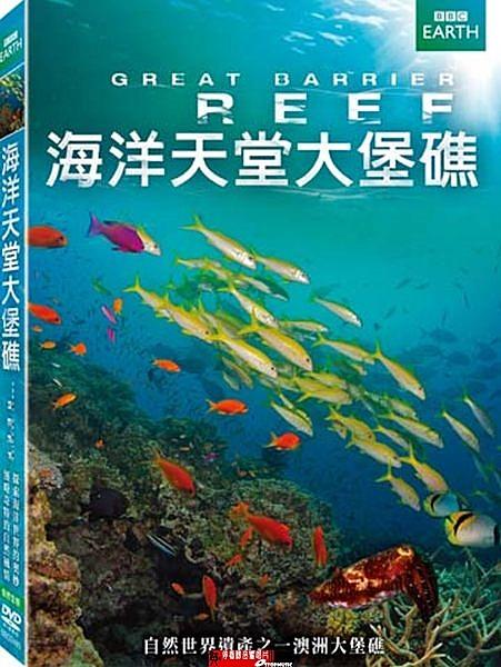 【停看聽音響唱片】【DVD】海洋天堂大堡礁