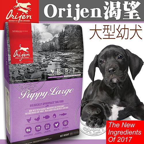 四個工作天出貨除了缺貨》Orijen 渴望》鮮雞大型幼犬-6kg