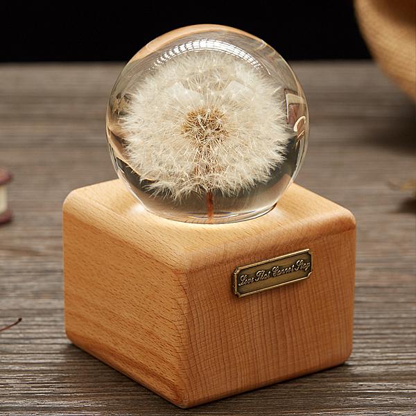 蒲公英標本永生花水晶球音樂盒八音盒創意生日禮物送閨蜜情侶新年NMS 喵小姐