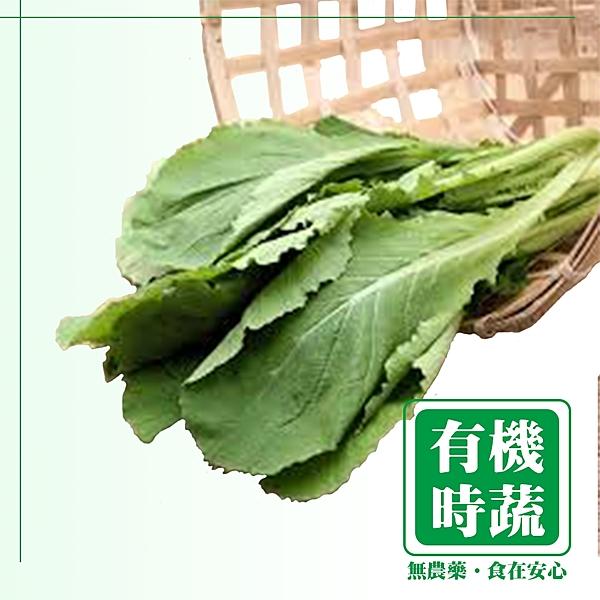 【有機認證生鮮時蔬】青松菜 ( 250g /包)