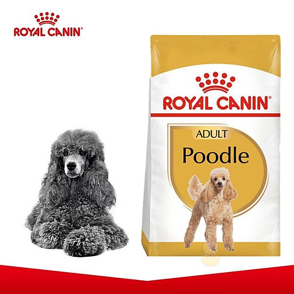 法國皇家 PDA貴賓成犬專用飼料(原PRP30)-7.5kg