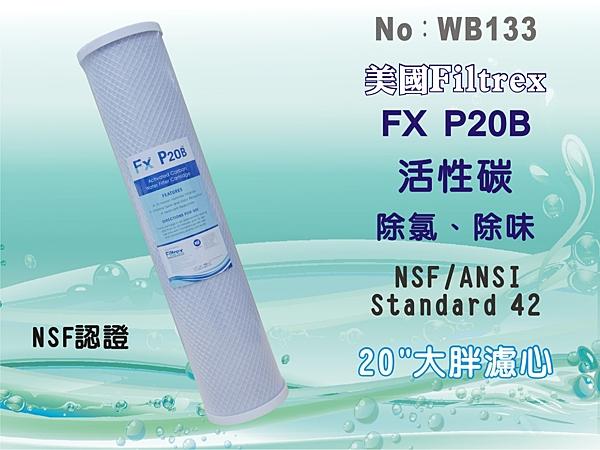 【水築館淨水】20吋大胖 美國Filtrex品牌 Fx NSF-CTO活性炭濾心 過濾器 淨水器(貨號WB133)