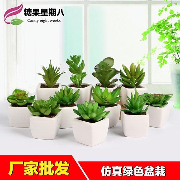 [超豐國際]仿真多肉植物盆栽迷你小盆景擺設房間壁柜女生桌面綠1入